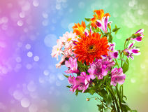 Heller Blumenblumenstrauß Stockbild