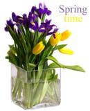 Heller Blumenstrauß der Frühlingsblumen Lizenzfreie Stockfotos