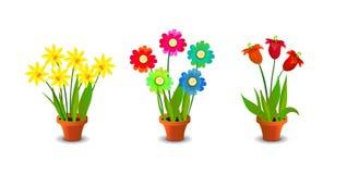 Heller, bunter Blumen-Clipart Stockbilder