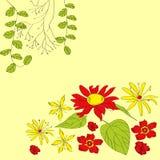 Heller dekorativer Hintergrund mit Blumen Lizenzfreie Stockfotografie