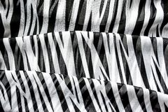 Heller eleganter transparenter Gasschal mit Schwarzweiss-Streifen mit einem Schwarzfarbhintergrund Draufsicht der Zebraverzierung Stockbild