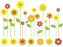 Heller Frühlingsblumengarten Stockfoto