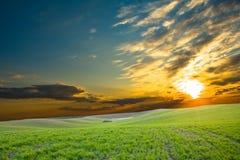 Heller glühender Sonnenuntergang Stockbilder