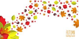 Heller Herbsthintergrund für Einladung oder Anzeigenschablone mit Kranz von den Blättern, von den Samen und von den Nüssen Stockfotografie
