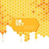 Heller Hintergrund der Bienenwaben Stockbilder