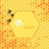 Heller Hintergrund der Bienenwaben Stockfotografie