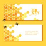 Heller Hintergrund der Bienenwaben Stockfoto