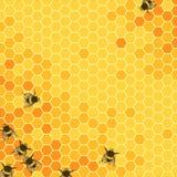 Heller Hintergrund der Bienenwaben Lizenzfreies Stockbild