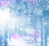 Heller Hintergrund des Winters für Karten lizenzfreie stockfotos