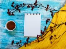 Heller Hintergrund mit blaue, blaue gemalt Farbenbretter, eine Tasse Tee, eine Niederlassung mit Äpfeln und Strickjacke mit Kopie Stockbild