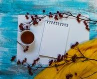 Heller Hintergrund mit blaue, blaue gemalt Farbenbretter, eine Tasse Tee, eine Niederlassung mit Äpfeln und Strickjacke mit Kopie Lizenzfreie Stockfotografie