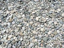 Heller Kiesel auf dem Strand Lizenzfreies Stockfoto