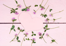 Heller Klee auf einem rosa hölzernen Hintergrund Lizenzfreie Stockfotografie