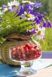 Heller Korb der Frucht und der Blume Stockfotos
