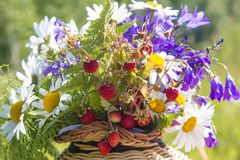 Heller Korb der Frucht und der Blume Lizenzfreie Stockfotografie