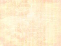 Heller Pfirsichverzierunghintergrund lizenzfreies stockbild