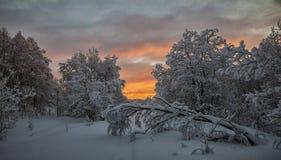 Heller polarer Sonnenuntergang Stockfoto