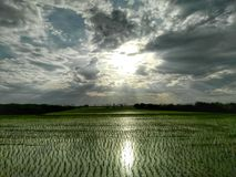 Heller reflektierender Bauernhof Stockfotografie