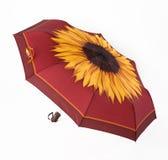 Heller Regenschirm Stockfotos