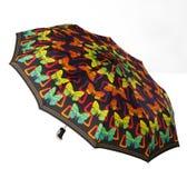 Heller Regenschirm Lizenzfreies Stockfoto
