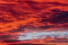 Heller roter Sonnenuntergang lizenzfreie stockfotos