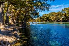 Heller schöner Herbstlaub auf Crystal Clear Frio River lizenzfreie stockfotos