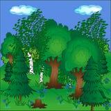 Heller schöner Waldschöne Natur im Frühjahr und blaue Schneeglöckchen Stockbild