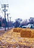 Heller Schnee auf dem Getreidefeld. lizenzfreies stockbild