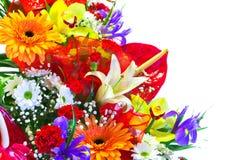 Heller Sommer-Blumen-Blumenstrauß Stockfotos