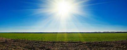 Heller Sonnenschein im klaren Himmel über dem grünen Feld stockfoto