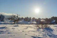 Heller Sonnenschein scheint auf Feld und Bäume winth Blendenfleck Russland, Stary Krym Lizenzfreie Stockfotografie