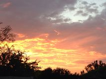 Heller Sonnenuntergang mit Bäumen Stockfoto