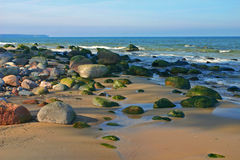 Heller sonniger Tag, das Meer, die Sonne, Sand, ein Strand. Stockfotos