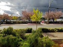 Heller stürmischer Himmel Stockfoto