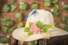 Heller weißer Hut der Libelle Stockfoto