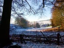 Heller Winterschneefall auf das ländliche Ackerland angesehen durch die Niederlassungen Stockfotografie