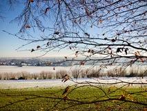 Heller Winterschneefall auf das ländliche Ackerland angesehen durch die Niederlassungen Stockbild