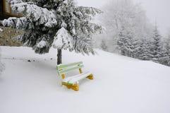 Heller Wintertag in den Bergen stockbilder