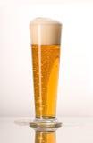 Helles Bier stockfotografie