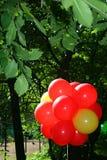Helles Bild eines Bündels roter Ballone beleuchtet durch die Sommersonne auf dem Hintergrund überhängenden Baums des grünen Laubs Lizenzfreies Stockbild