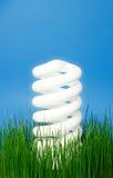 Helles eco Glühlampe, die über das grüne Gras steigt Stockbild