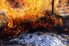 Helles Feuer auf weißem Schnee Frühling Schmelzen Sie den Schnee lizenzfreie stockfotos