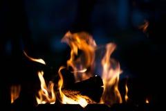 Helles Feuer Das Konzept der Natur Lizenzfreies Stockbild