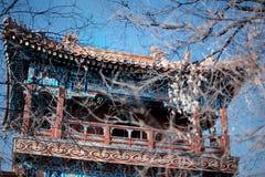 Helles kopiertes Dach des buddhistischen Klosters lizenzfreies stockbild