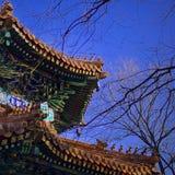Helles kopiertes Dach des buddhistischen Klosters stockbild