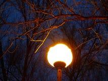 Helles Licht einer Laterne im Abend Park Lizenzfreie Stockfotos