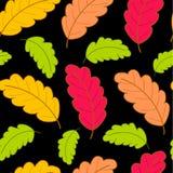 Helles Muster mit Eiche leaves2 Lizenzfreies Stockbild