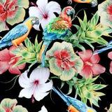 Helles nahtloses Muster mit Papageien und Blumen hibiscus Bromelie Dekoratives Bild einer Flugwesenschwalbe ein Blatt Papier in s Lizenzfreie Stockfotos
