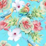 Helles nahtloses Muster mit Papageien und Blumen hibiscus Bromelie Dekoratives Bild einer Flugwesenschwalbe ein Blatt Papier in s Lizenzfreie Stockbilder