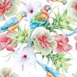 Helles nahtloses Muster mit Papageien und Blumen hibiscus Bromelie Dekoratives Bild einer Flugwesenschwalbe ein Blatt Papier in s Stockbild